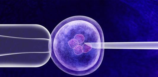 gene editing vitro genetics crispr