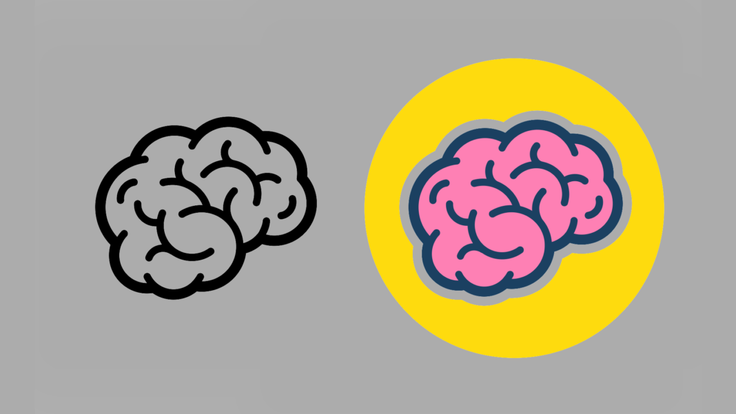 minibrains illustration neuroscience