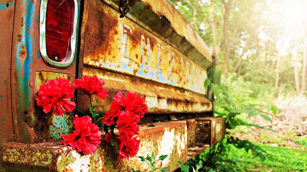 future vintage brown vehicle with red petaled flowers