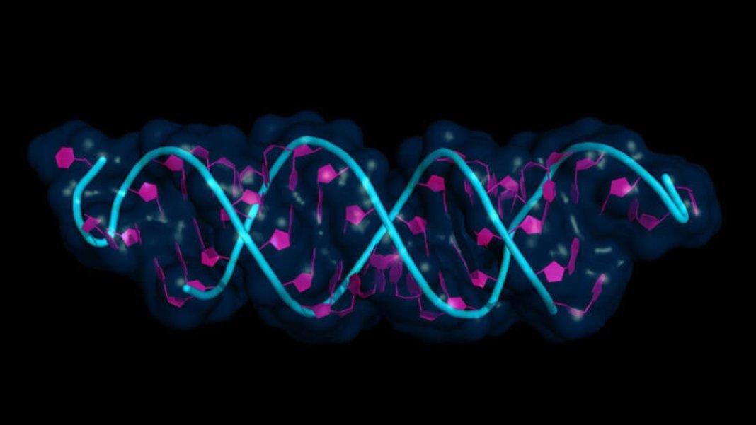 gene therapy universal switch genetics DNA