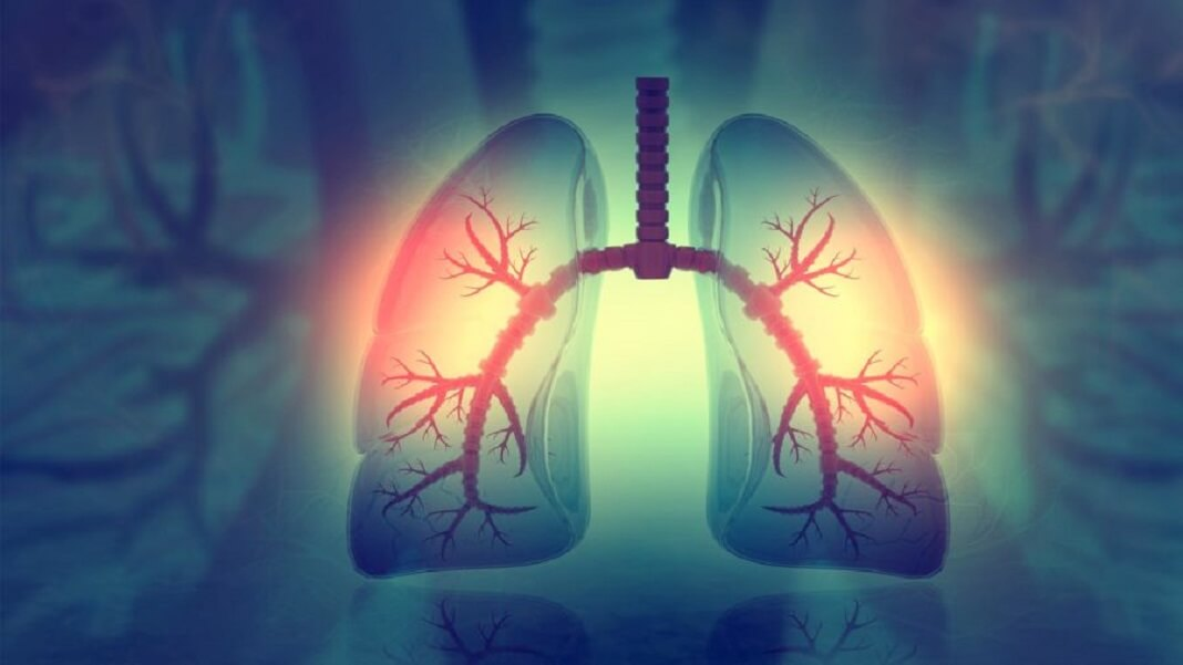 grow lungs inside living mice