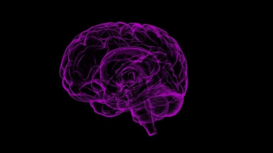 brain dopamine reinforcement learning DeepMind