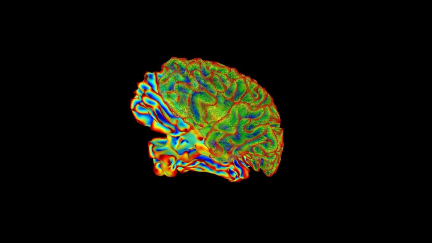 These Breakthroughs Made the 2010s the Decade of the Brain