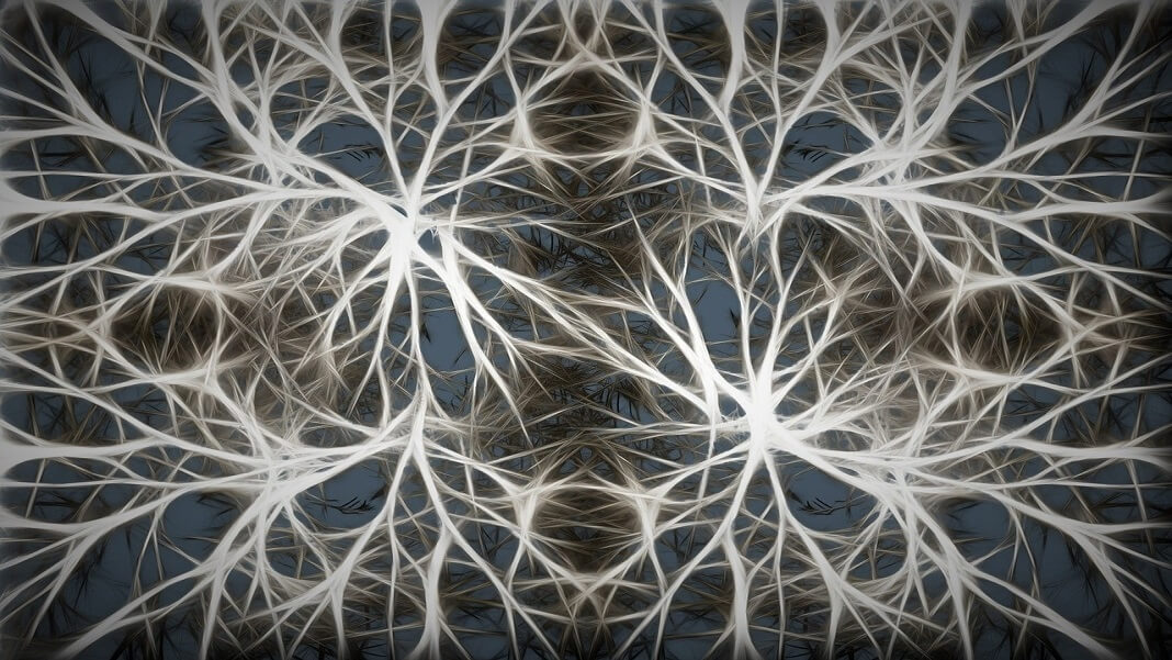 neurons artificial biological link neuroscience