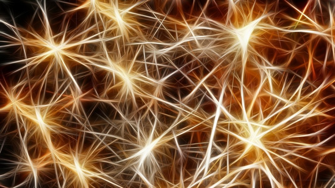 electrically conductive neurons