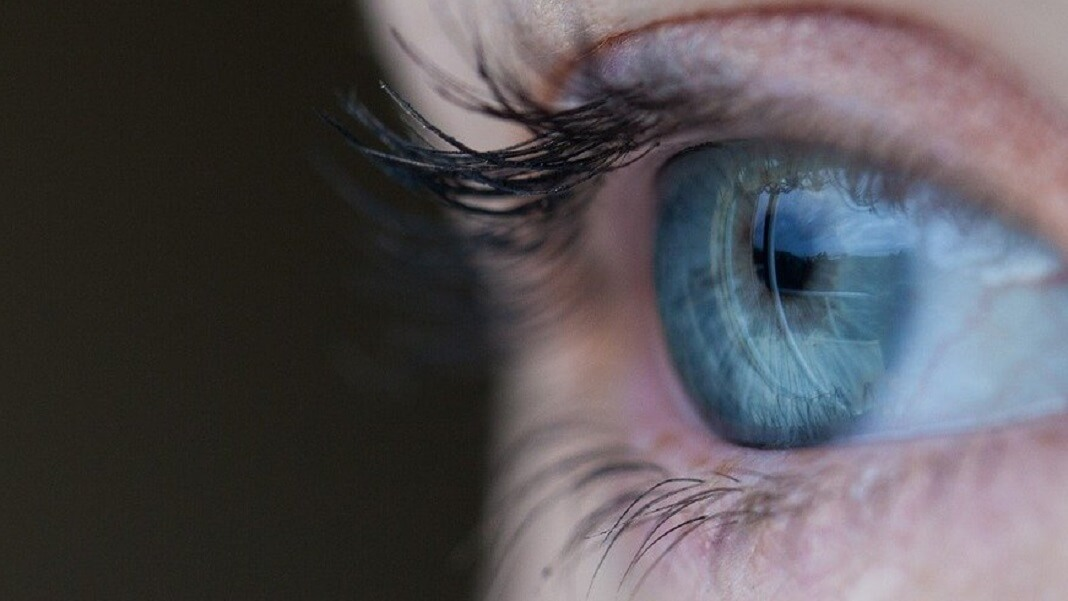A New Bionic Eye Could Give Robots and the Blind 20/20 Vision - Singularity Hub
