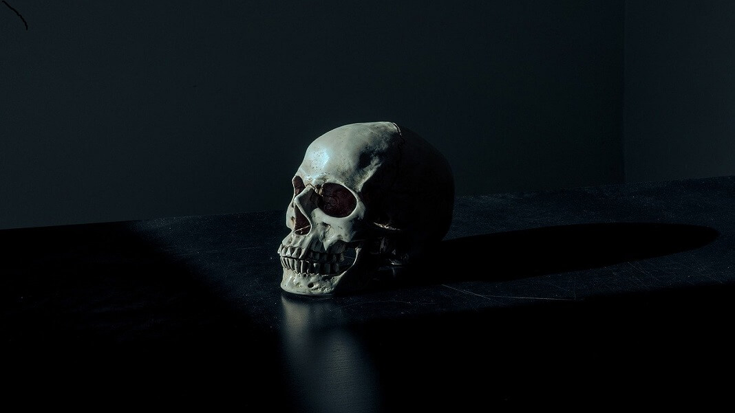 skull on black background human extinction bones