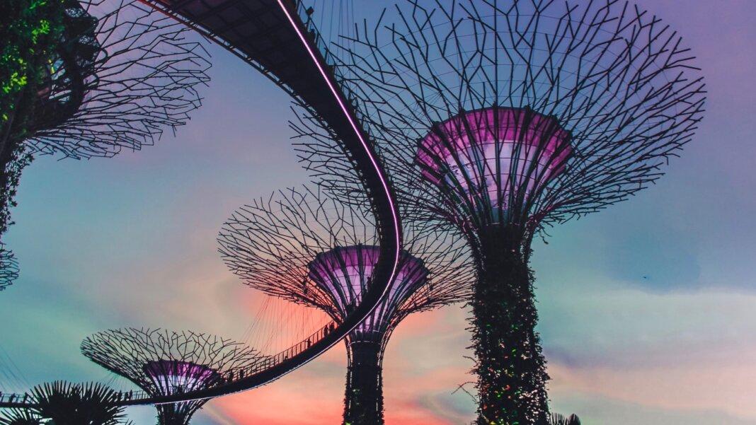 tech stories singapore gardens technology sunset