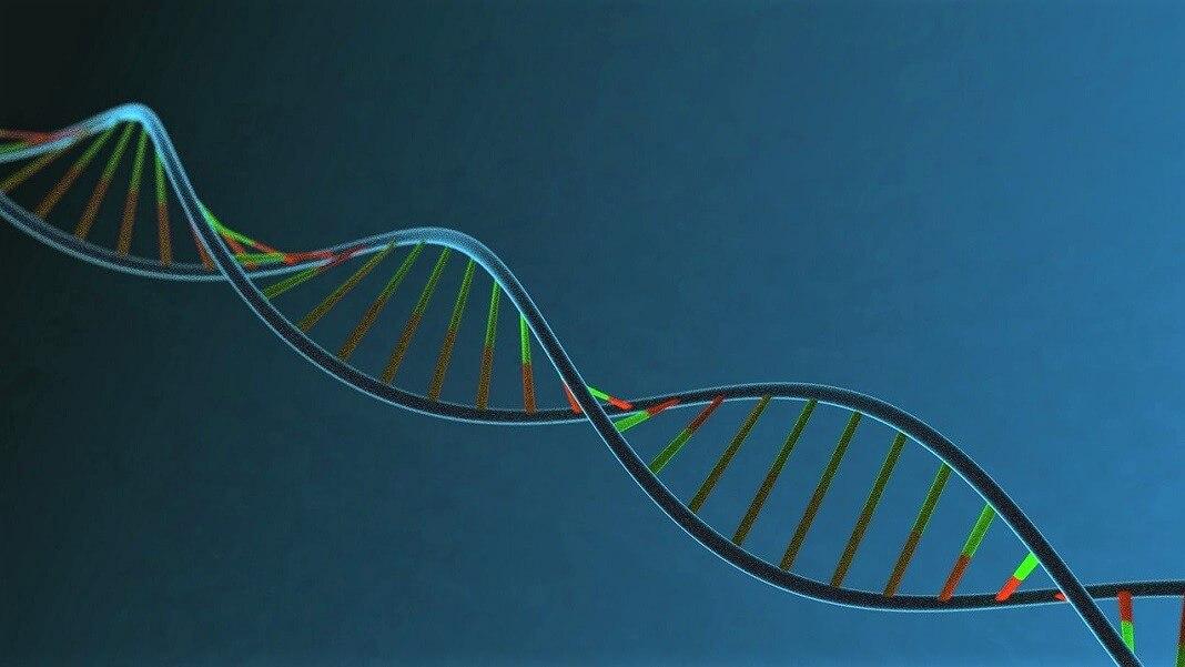 DNA CRISPR gene editing