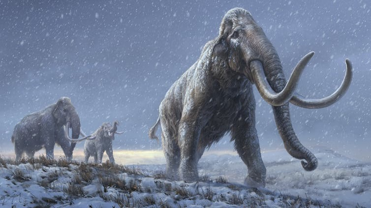 oldest ever dna steppe-mammoth