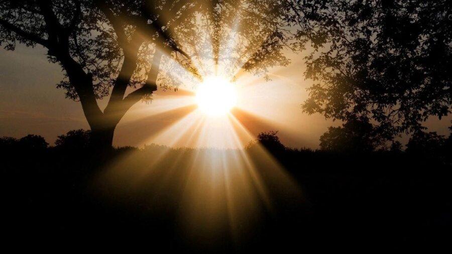 sunset shadows Ishiguro book Klara and the Sun review