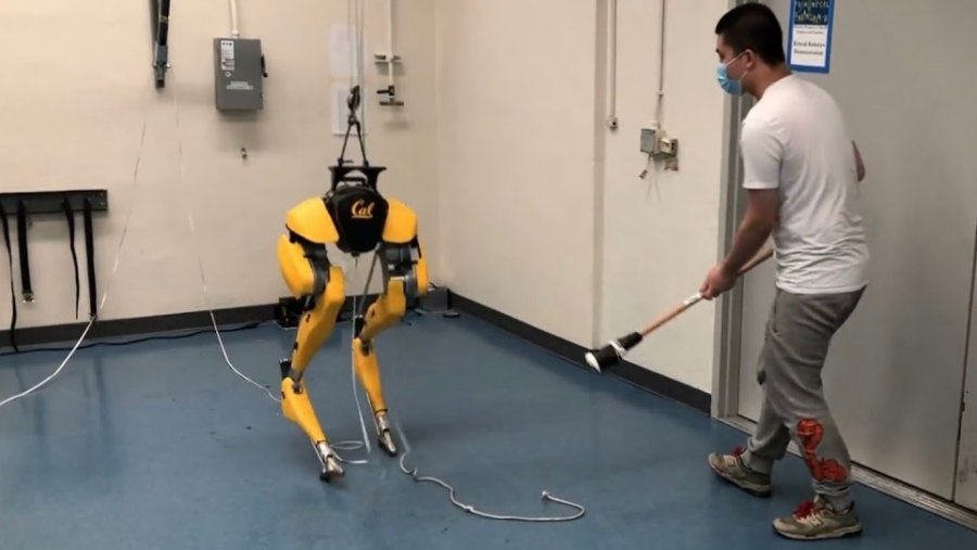 artificial intelligence cassie robot machine learning walking