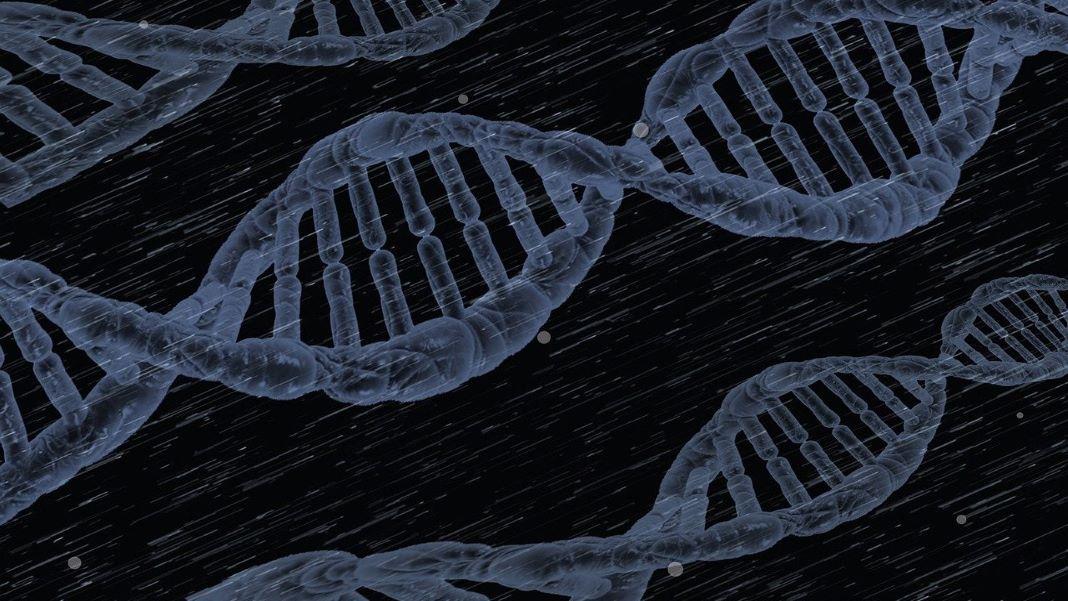 gene therapy ADA-SCID genetics health