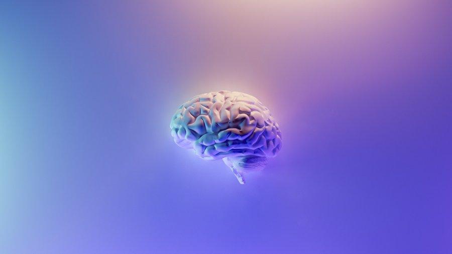 origin of consciousness brain neuroscience