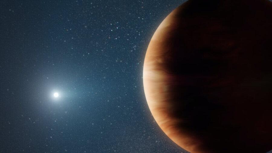 jupiter-like exoplanet survives death of star white dwarf